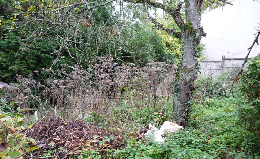 Le terrain du potager avant apr s un potager bio - Preparer son terrain avant pelouse ...